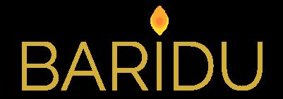 Baridu